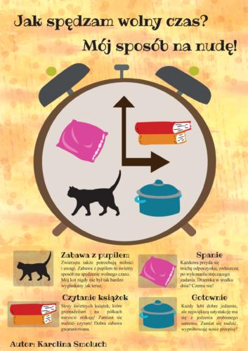 Karolina Smoluch- infografika